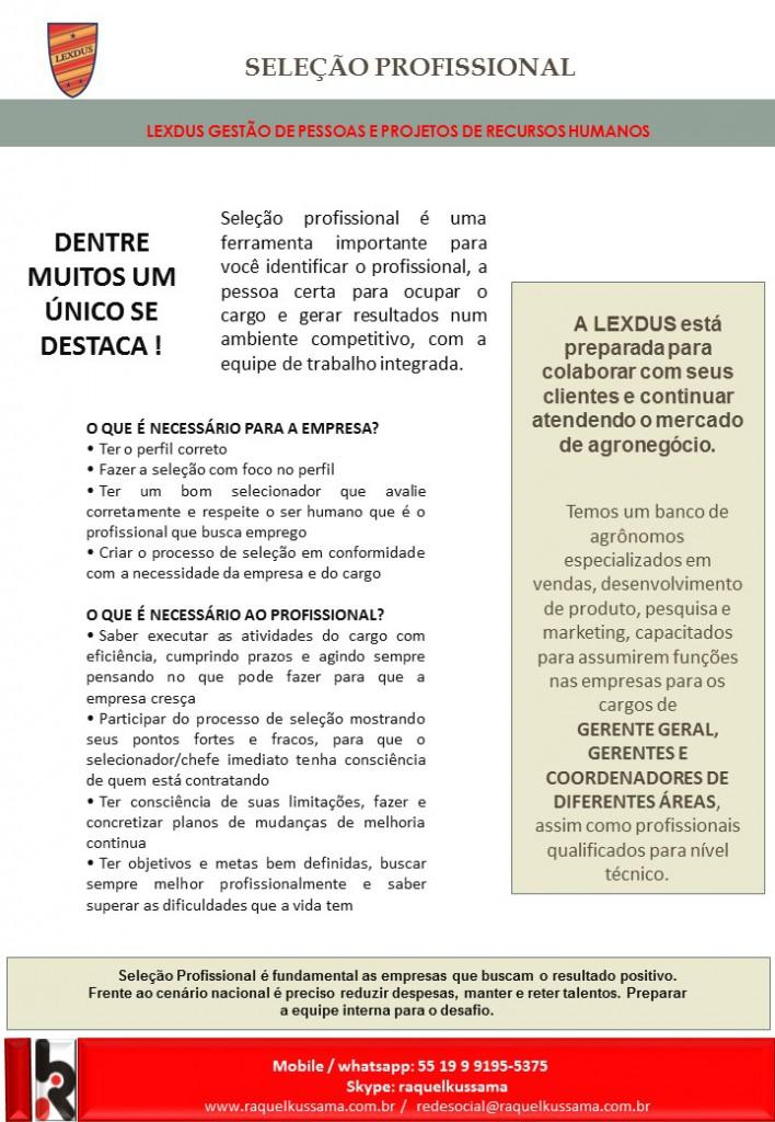 informe-selecao7